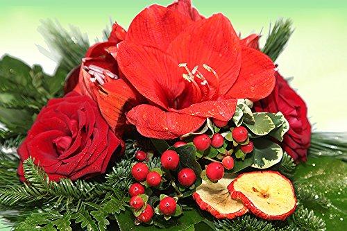 garten top kaufen blumenstrau weihnachten adventsstrau rosen amaryllis. Black Bedroom Furniture Sets. Home Design Ideas