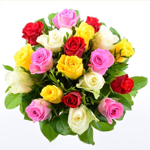 garten top kaufen blumenversand blumenstrau zum geburtstag gemischte bunte rosen mit 20. Black Bedroom Furniture Sets. Home Design Ideas